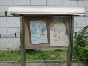 hong-kong_079
