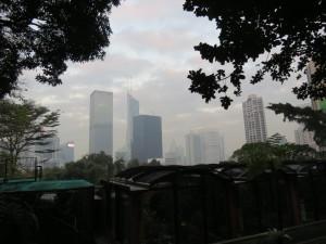 hong-kong_319