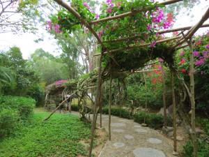 nanshan-temple_094