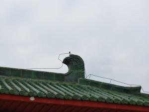 nanshan-temple_130
