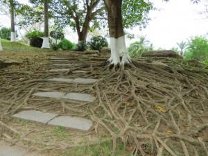nanshan-temple_181