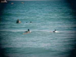 Surfing_43