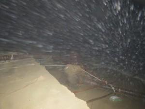 typhoon-haiyan_11