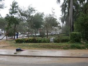typhoon-haiyan_19