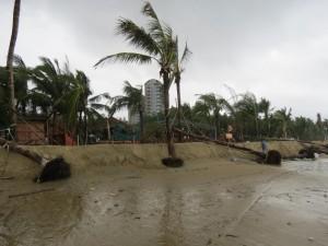 typhoon-haiyan_24