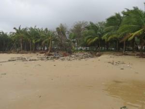 typhoon-haiyan_26