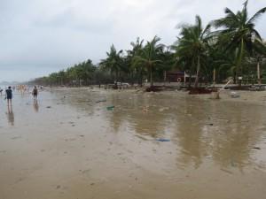typhoon-haiyan_29
