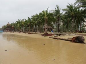 typhoon-haiyan_30