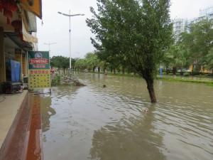 typhoon-haiyan_55