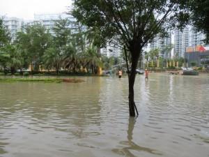 typhoon-haiyan_56