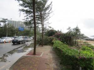 typhoon-haiyan_57