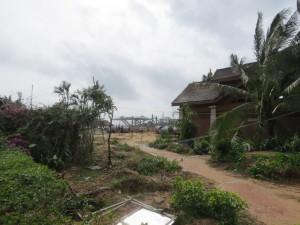 typhoon-haiyan_58