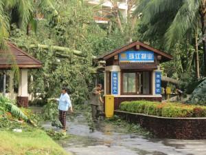 typhoon-haiyan_66