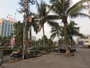 danzhou_28