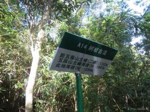 wuzhishan_028