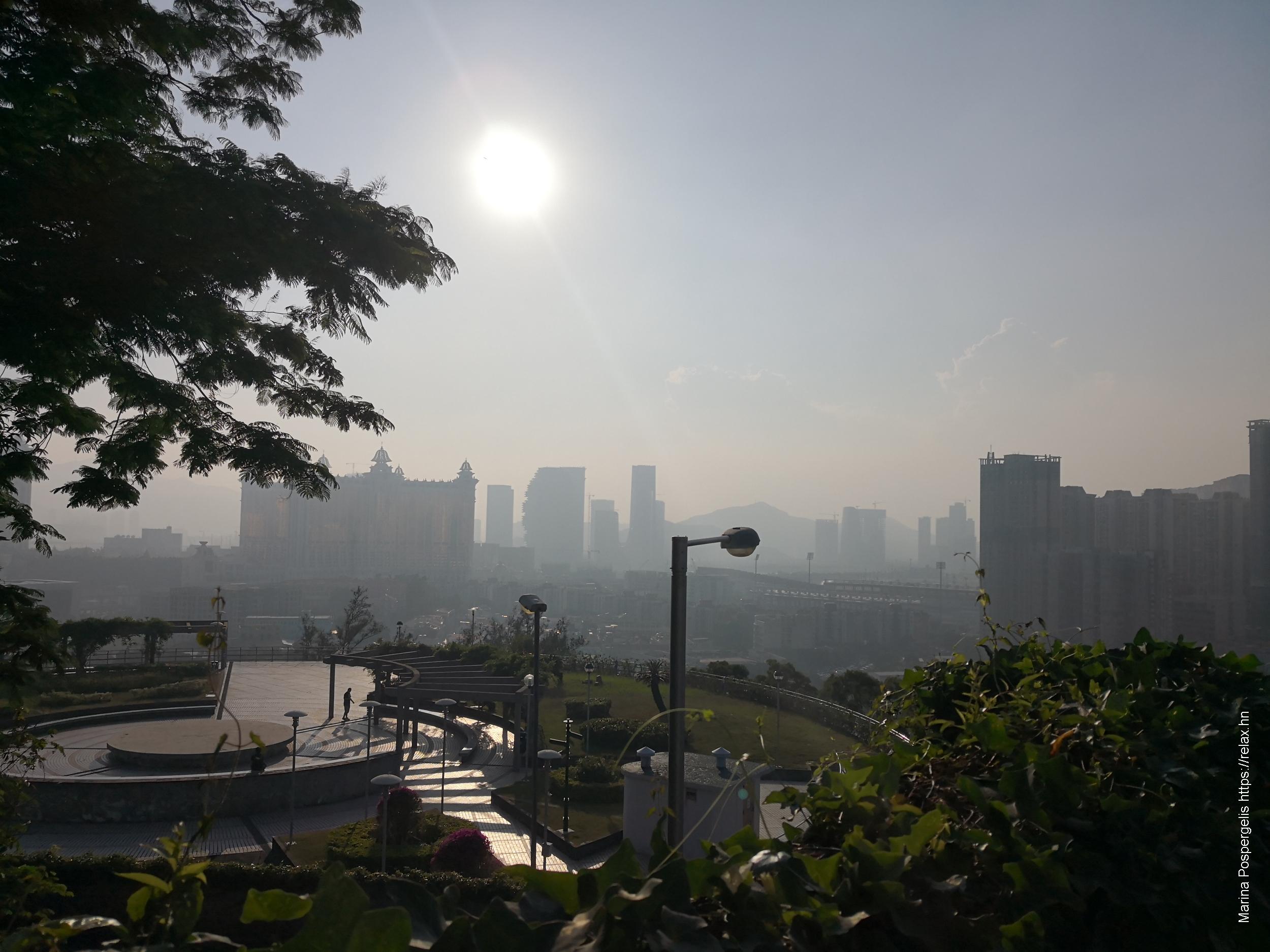 Вид на парк на смотровой площадке